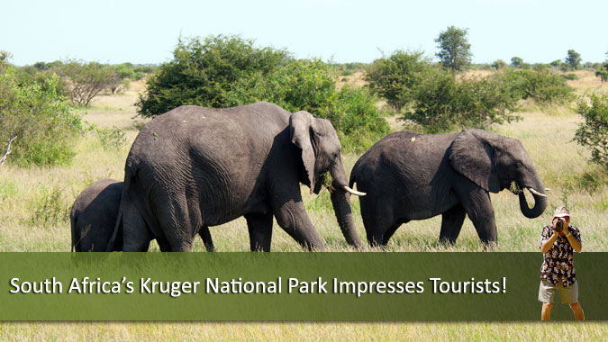 South-Africa-Kruger-National-Park-Impresses-Tourist