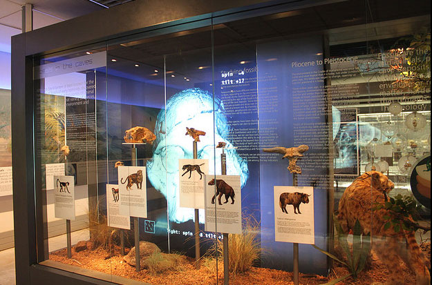 Cradle of humankind by flowcomm/ CC BY