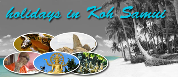 holidays-in-koh-samui