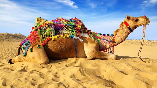 Jaisalmerr