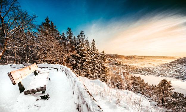 Snow-Festivals