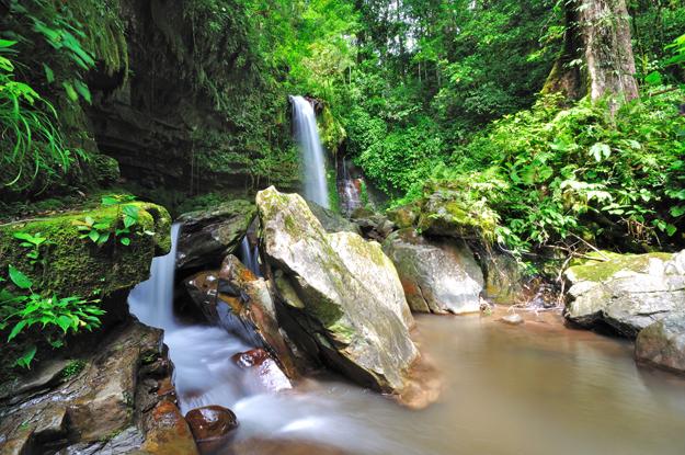 Kinabalu-national-park
